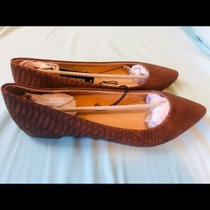 Express Snakeskin Pointed Toe Flats